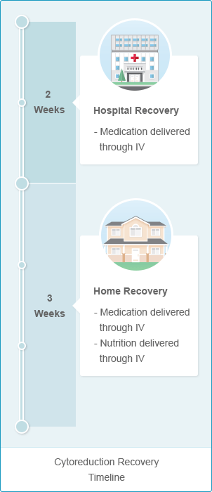 Timeline for Cytoreductive Surgery recovery for mobile users