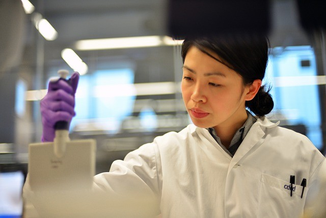 Researcher looking at lab equipment