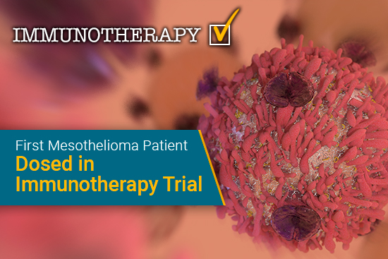 CA 170, immunotherapy, mesothelioma clinical trial