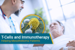 T-cell therapy used on mesothelioma patient